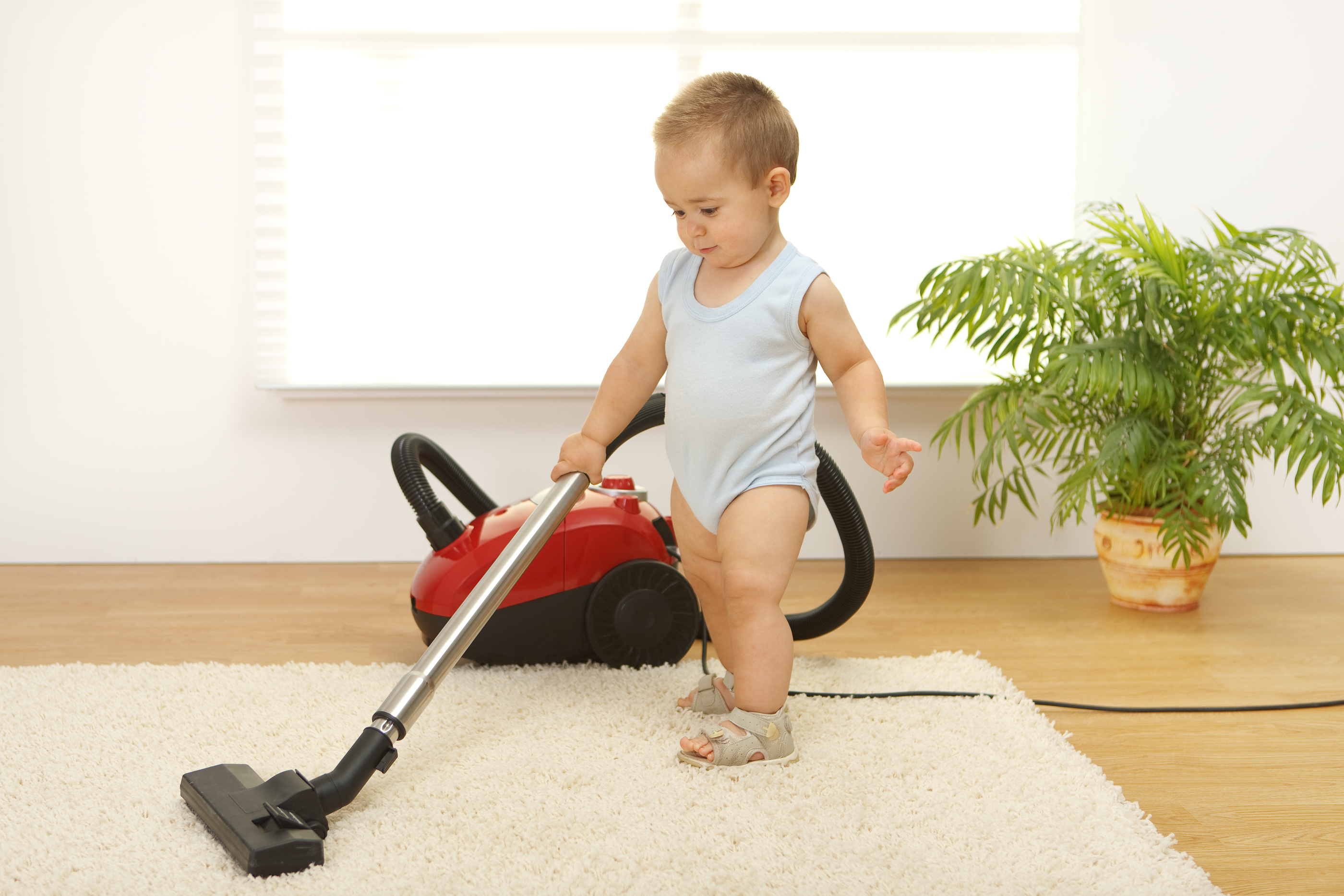 Do It Yourself Carpet Cleaning