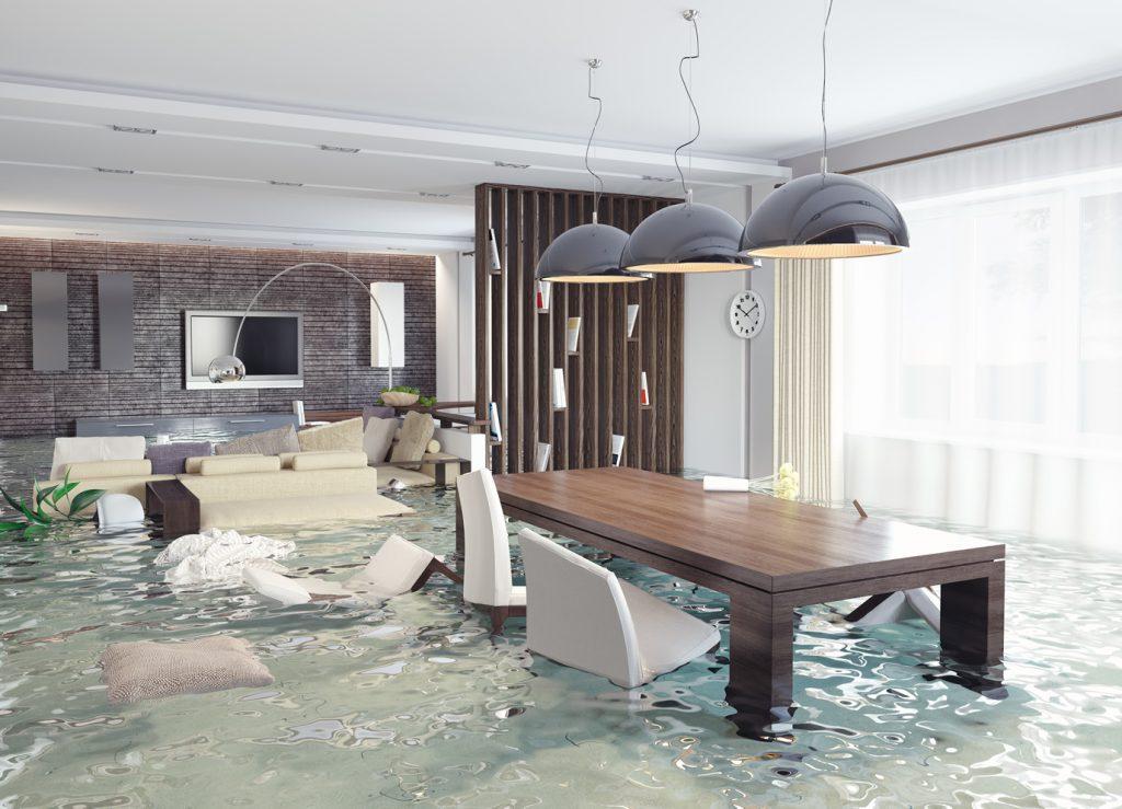 Water Damage Restoration   Dynamic Carpet Care of Tulsa