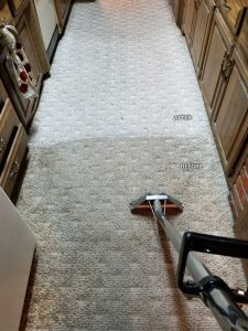 Kitchen Carpet Cleaning