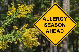 Allergies and carpet cleaning