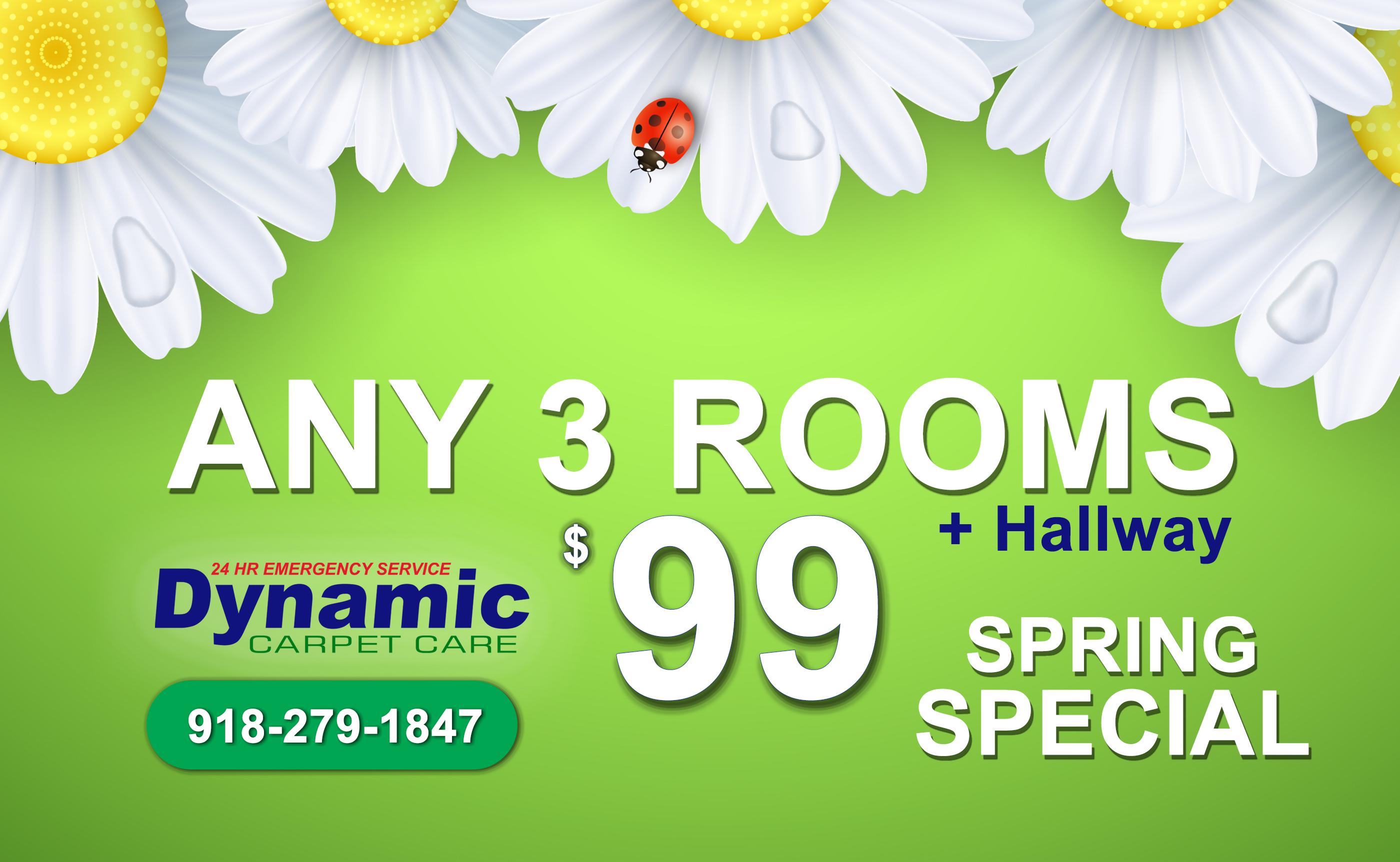 Dynamic Carpet Spring Special Dynamic Carpet Care